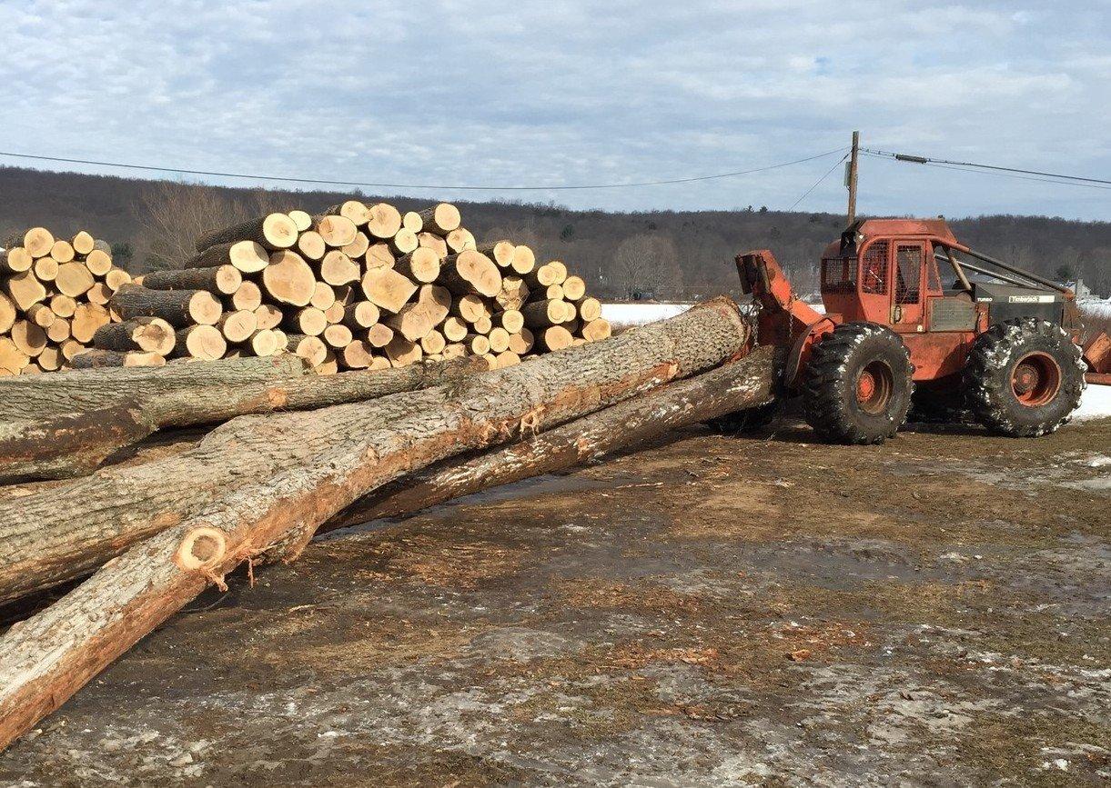 rsz_logging